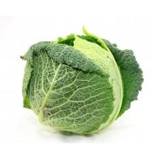 Choux Vert