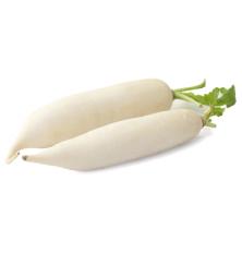 Navet Long/Radis blanc 1 piece