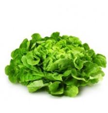Salade Krisette