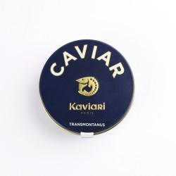 caviar transmontanus